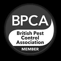 Pest Control Service London
