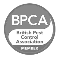 pest killers uk Pest Control Service London